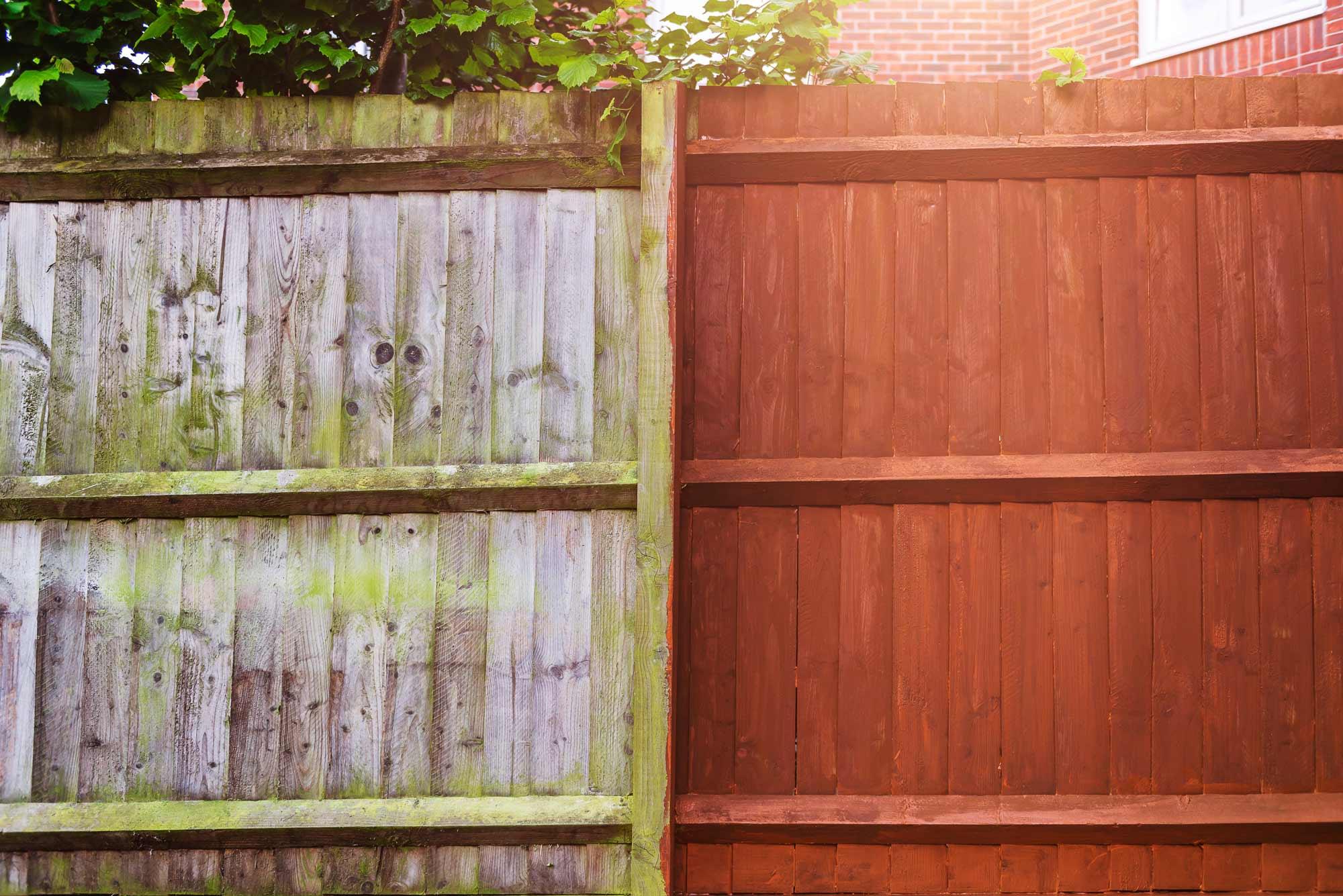 Fence Staining Wellington